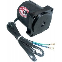 ARCO Marine, OMC 1991-Up Heavy-Duty Tilt Trim Motor, 6241