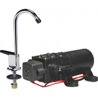 Johnson Pump, WPS Water Pump & Faucet Combo, 61123